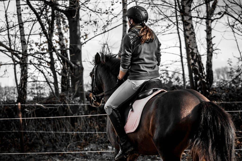 beste paardrijcaps